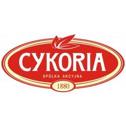 Cykoria - Цикория